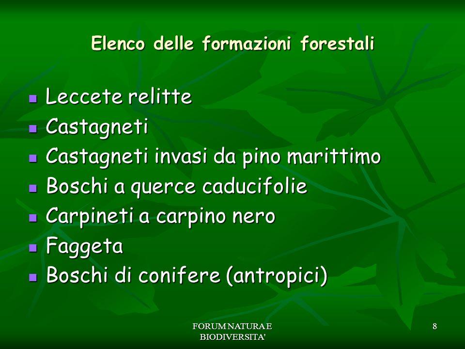 8 Elenco delle formazioni forestali Leccete relitte Leccete relitte Castagneti Castagneti Castagneti invasi da pino marittimo Castagneti invasi da pin