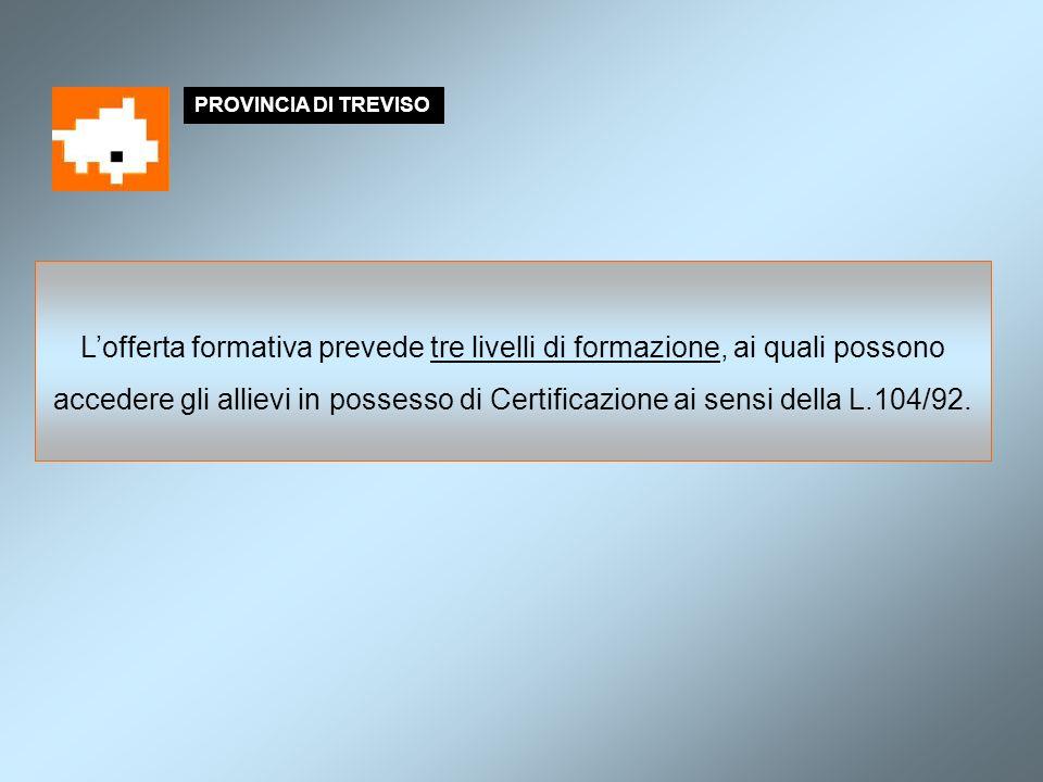PROVINCIA DI TREVISO Lofferta formativa prevede tre livelli di formazione, ai quali possono accedere gli allievi in possesso di Certificazione ai sensi della L.104/92.
