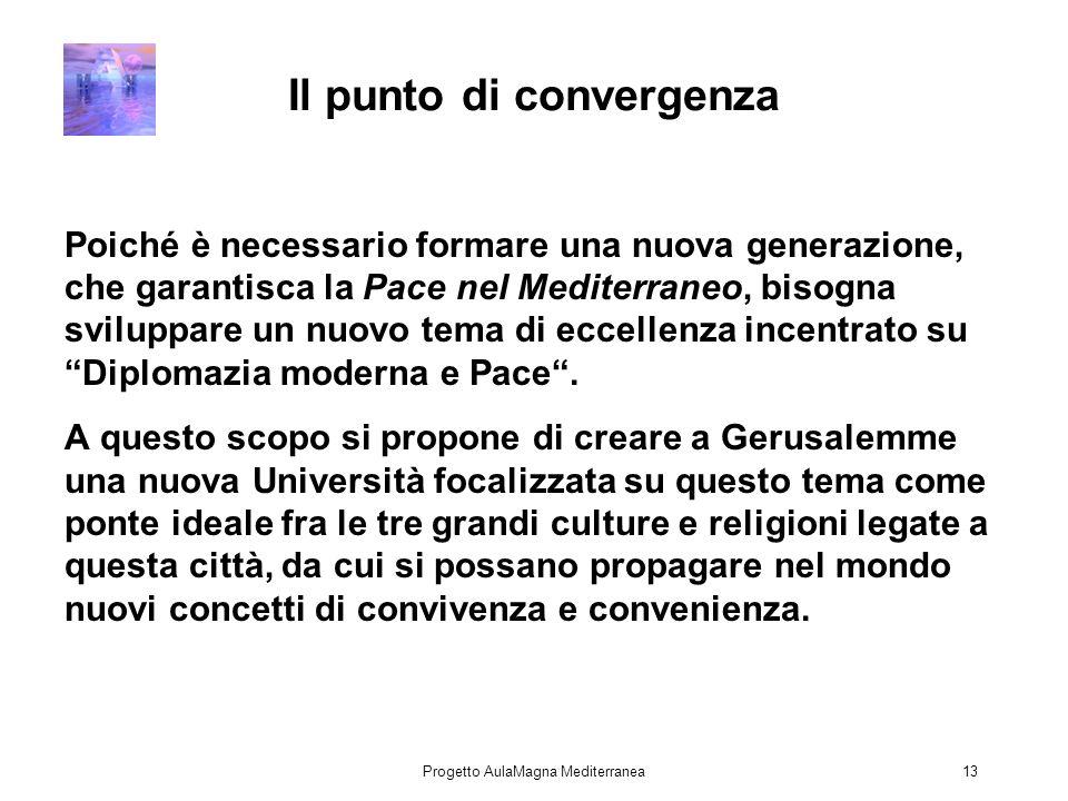Progetto AulaMagna Mediterranea13 Il punto di convergenza Poiché è necessario formare una nuova generazione, che garantisca la Pace nel Mediterraneo, bisogna sviluppare un nuovo tema di eccellenza incentrato su Diplomazia moderna e Pace.
