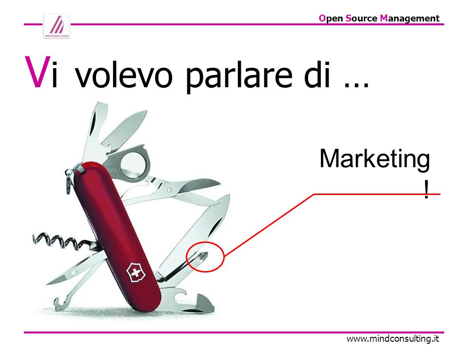Open Source Management www.mindconsulting.it C OME SONO MESSE LE AZIENDE.