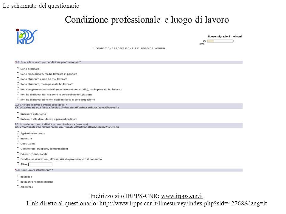Condizione professionale e luogo di lavoro Indirizzo sito IRPPS-CNR: www.irpps.cnr.it Link diretto al questionario: http://www.irpps.cnr.it/limesurvey