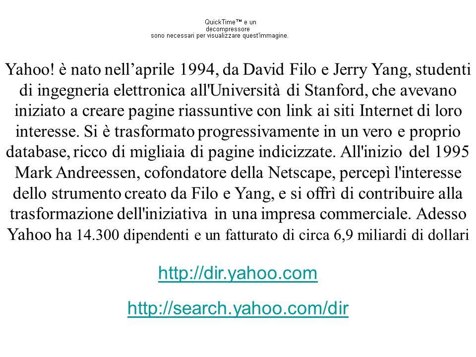 Yahoo! è nato nellaprile 1994, da David Filo e Jerry Yang, studenti di ingegneria elettronica all'Università di Stanford, che avevano iniziato a crear