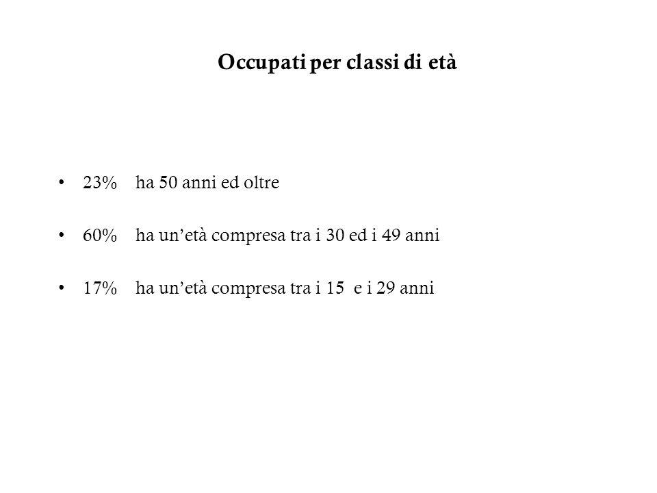Occupati per classi di età 23% ha 50 anni ed oltre 60% ha unetà compresa tra i 30 ed i 49 anni 17% ha unetà compresa tra i 15 e i 29 anni