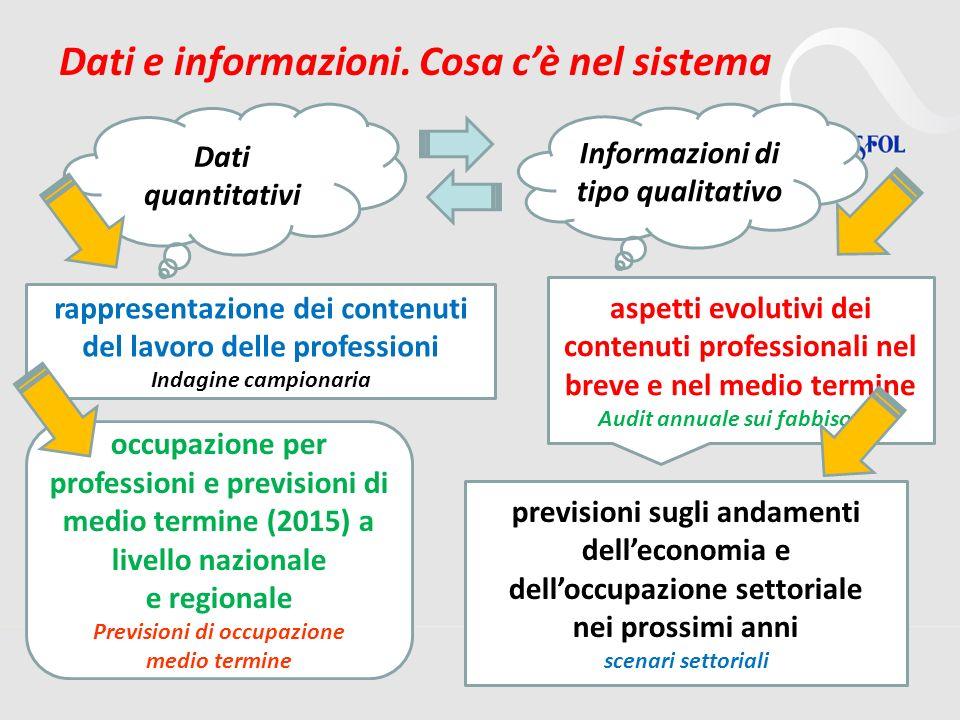 16 Dati e informazioni. Cosa cè nel sistema rappresentazione dei contenuti del lavoro delle professioni Indagine campionaria aspetti evolutivi dei con
