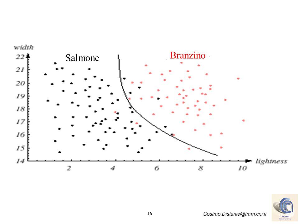 16 Cosimo.Distante@imm.cnr.it Salmone Branzino