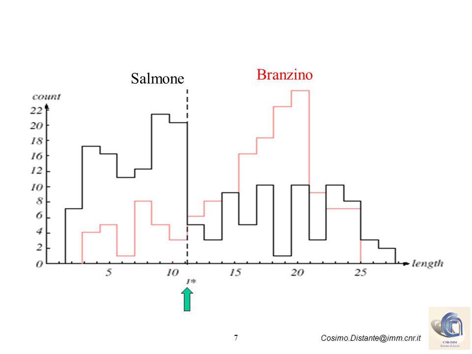 7 Cosimo.Distante@imm.cnr.it Salmone Branzino