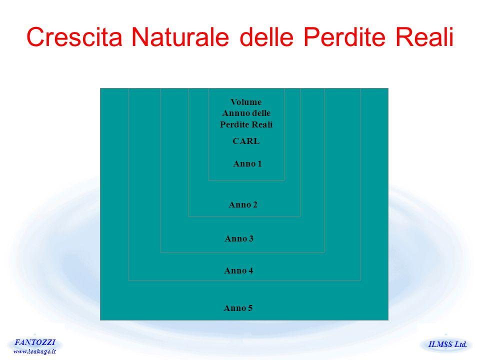 ILMSS Ltd. FANTOZZI www.leakage.it Crescita Naturale delle Perdite Reali Anno 5 Anno 4 Anno 3 Anno 2 Anno 1 Volume Annuo delle Perdite Reali CARL