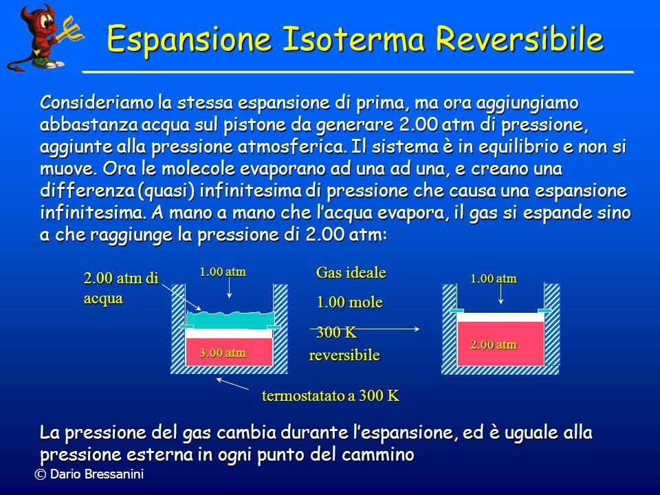 © Dario Bressanini Consideriamo la stessa espansione di prima, ma ora aggiungiamo abbastanza acqua sul pistone da generare 2.00 atm di pressione, aggi