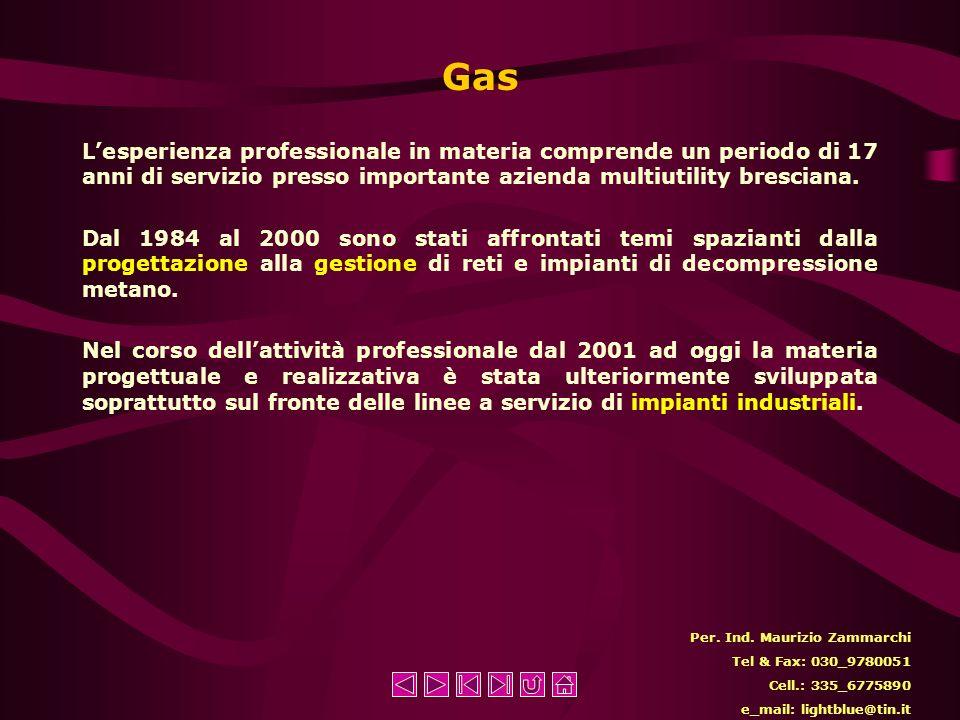 Gas Lesperienza professionale in materia comprende un periodo di 17 anni di servizio presso importante azienda multiutility bresciana.
