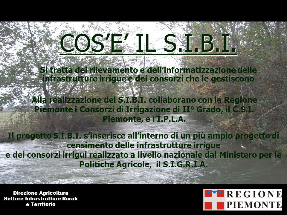 COSE IL S.I.B.I. Si tratta del rilevamento e dellinformatizzazione delle infrastrutture irrigue e dei consorzi che le gestiscono Alla realizzazione de