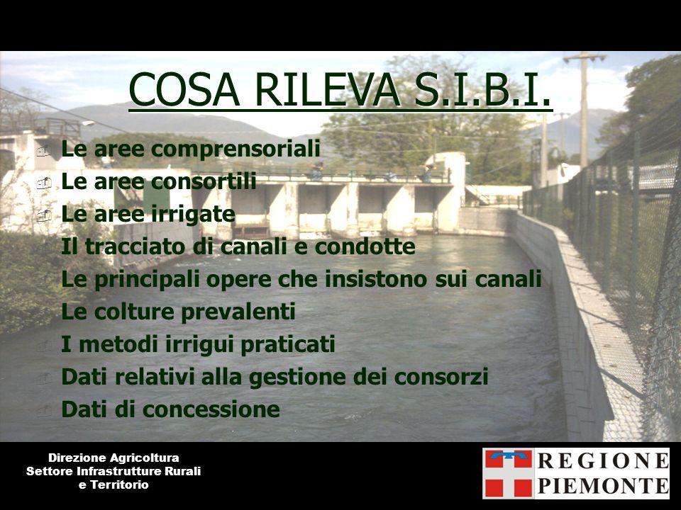 COSA RILEVA S.I.B.I. Le aree comprensoriali Le aree consortili Le aree irrigate Il tracciato di canali e condotte Le principali opere che insistono su