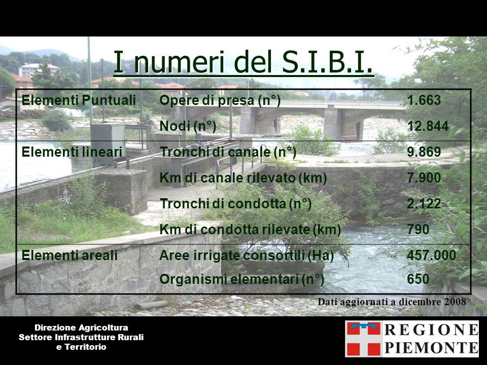 I numeri del S.I.B.I. Direzione Agricoltura Settore Infrastrutture Rurali e Territorio Dati aggiornati a dicembre 2008 Elementi PuntualiOpere di presa
