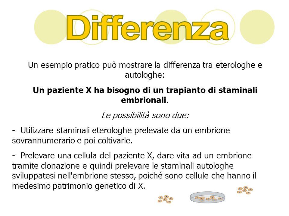 Un esempio pratico può mostrare la differenza tra eterologhe e autologhe: Un paziente X ha bisogno di un trapianto di staminali embrionali. Le possibi