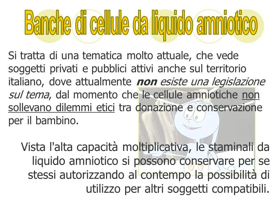 Si tratta di una tematica molto attuale, che vede soggetti privati e pubblici attivi anche sul territorio italiano, dove attualmente non esiste una le