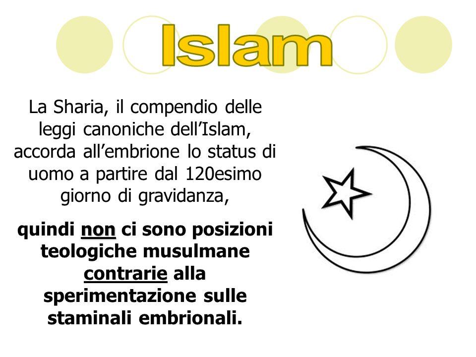 La Sharia, il compendio delle leggi canoniche dellIslam, accorda allembrione lo status di uomo a partire dal 120esimo giorno di gravidanza, non quindi