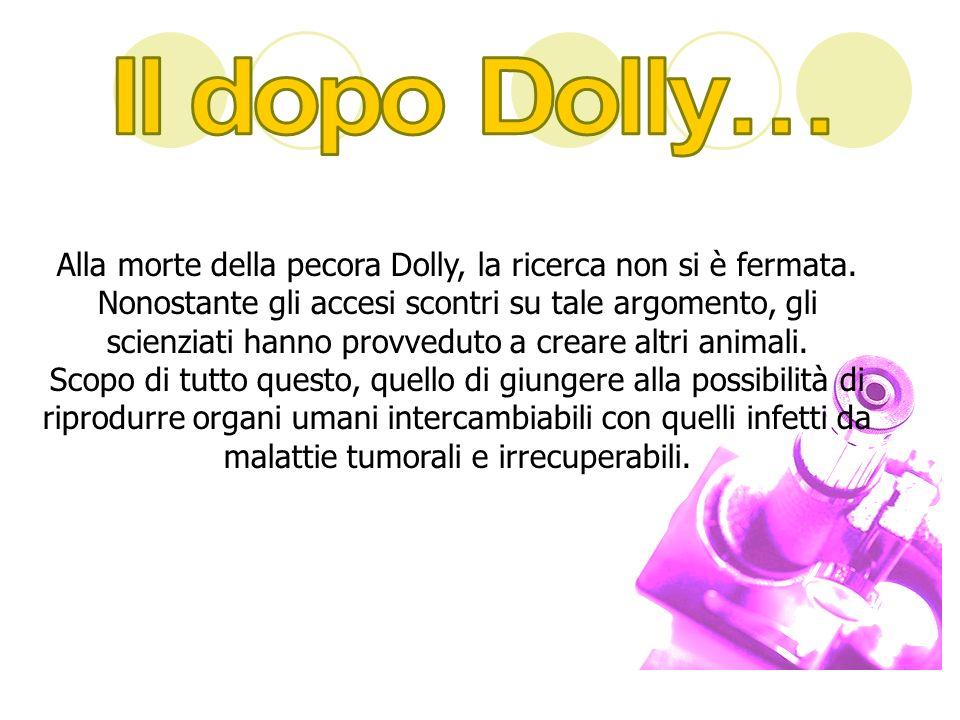 Alla morte della pecora Dolly, la ricerca non si è fermata. Nonostante gli accesi scontri su tale argomento, gli scienziati hanno provveduto a creare