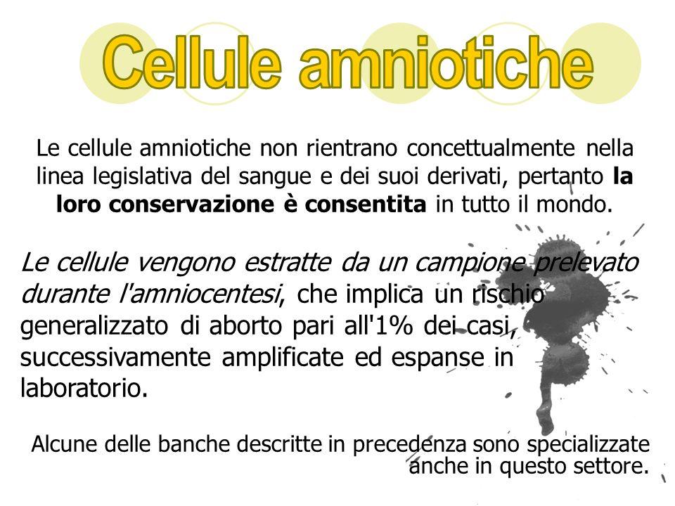 Le cellule amniotiche non rientrano concettualmente nella linea legislativa del sangue e dei suoi derivati, pertanto la loro conservazione è consentit