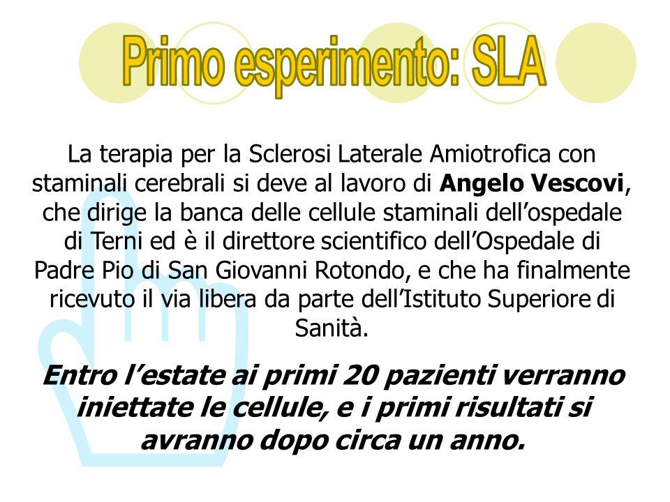 La terapia per la Sclerosi Laterale Amiotrofica con staminali cerebrali si deve al lavoro di Angelo Vescovi, che dirige la banca delle cellule stamina