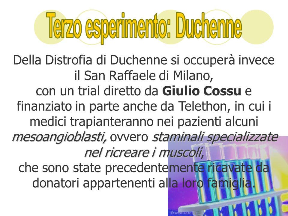 Della Distrofia di Duchenne si occuperà invece il San Raffaele di Milano, mesoangioblasti, staminali specializzate nel ricreare i muscoli con un trial