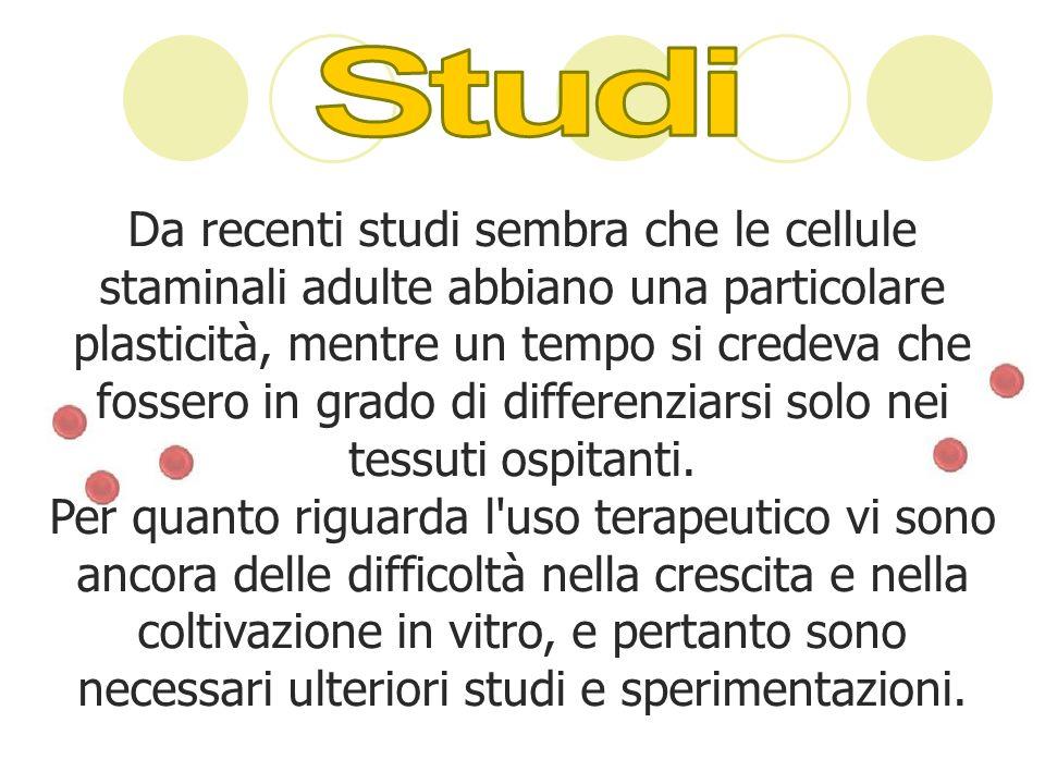Il dibattito italiano sulle cellule staminali embrionali vede il fronte scientifico spaccato.