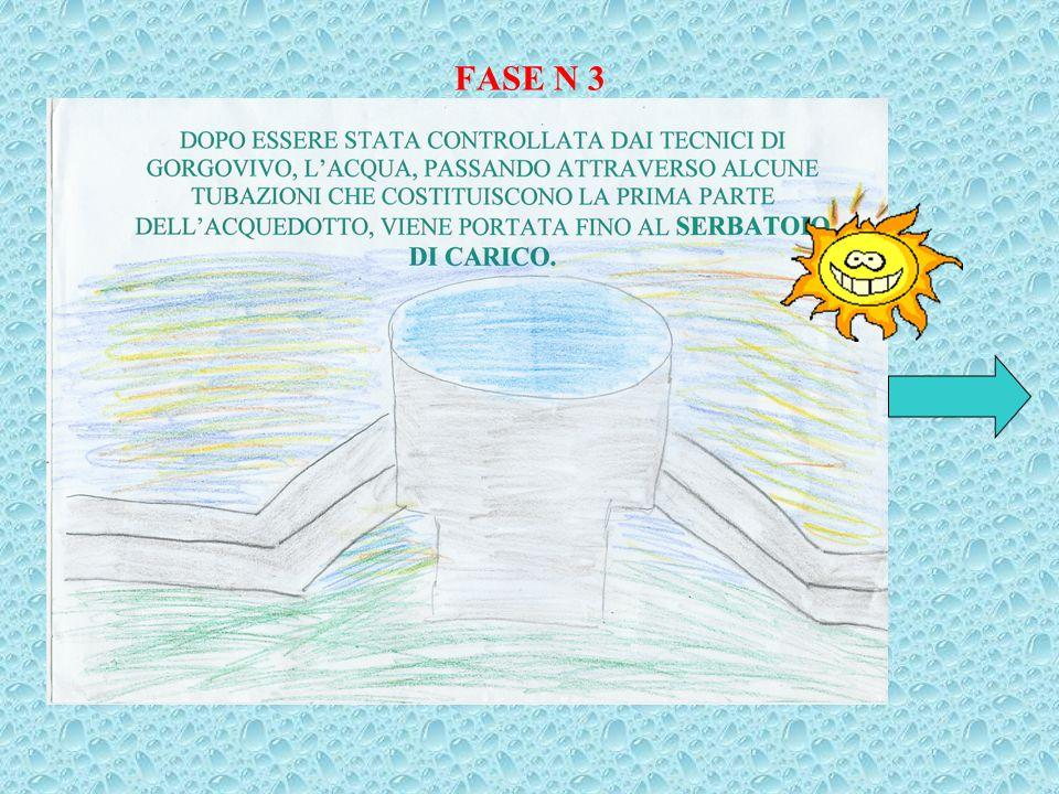 FASE N 2