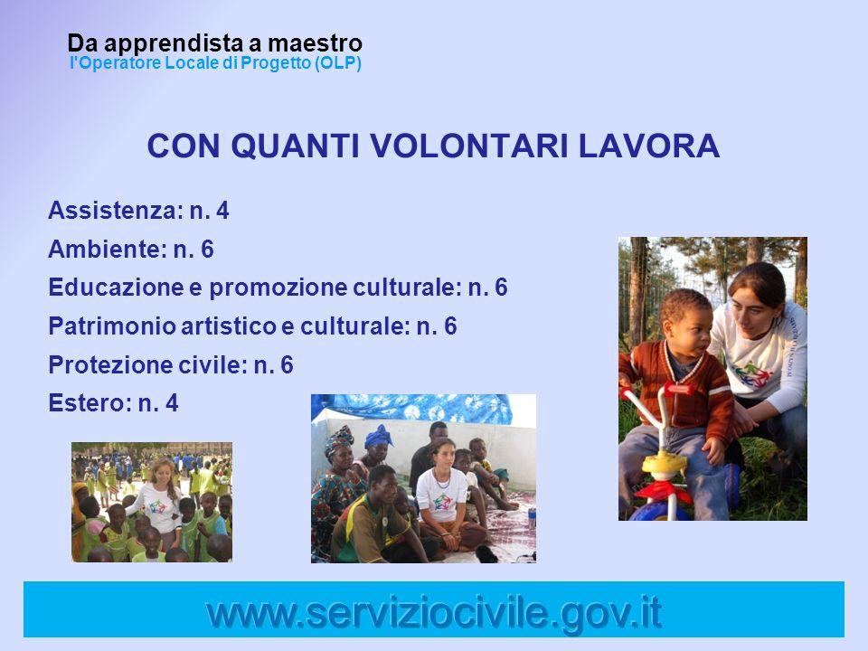 Assistenza: n. 4 Ambiente: n. 6 Educazione e promozione culturale: n. 6 Patrimonio artistico e culturale: n. 6 Protezione civile: n. 6 Estero: n. 4 Da