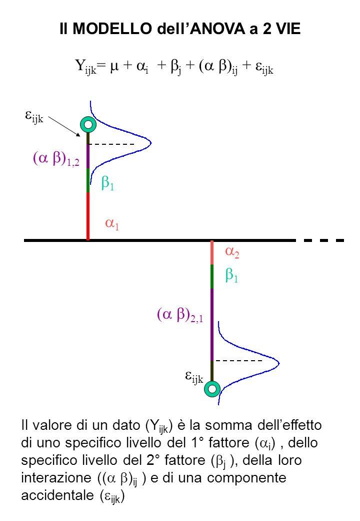 Il MODELLO dellANOVA a 2 VIE Y ijk = + i + j + ( ) ij + ijk 1 2 1 1 ( ) 1,2 ( ) 2,1 ijk Il valore di un dato (Y ijk ) è la somma delleffetto di uno sp