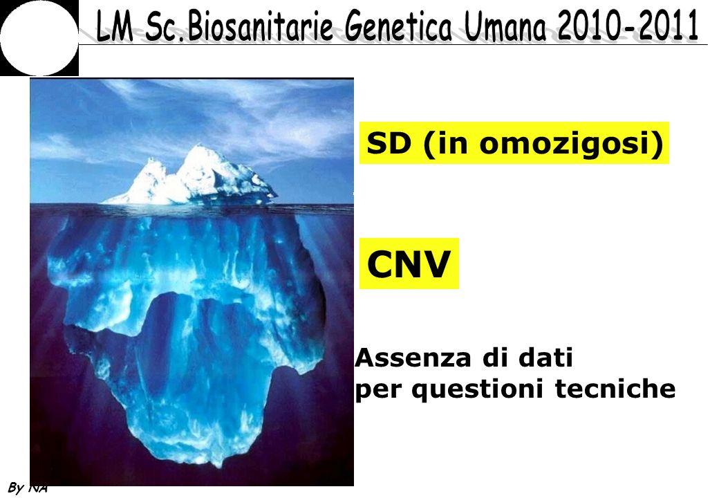 SD (in omozigosi) CNV Assenza di dati per questioni tecniche