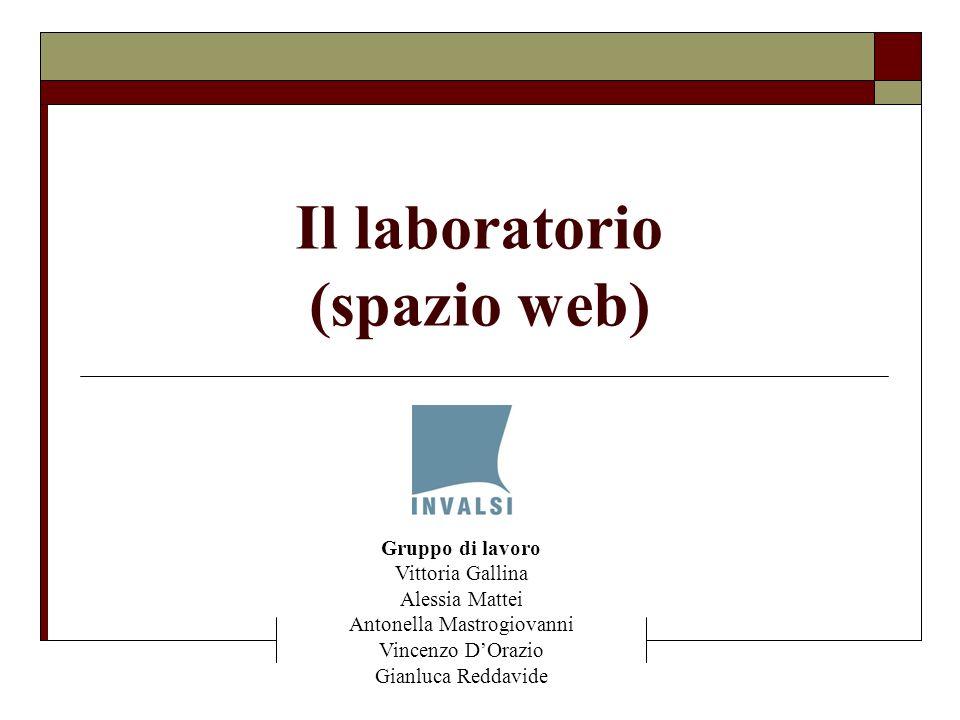 Il laboratorio (spazio web) Gruppo di lavoro Vittoria Gallina Alessia Mattei Antonella Mastrogiovanni Vincenzo DOrazio Gianluca Reddavide