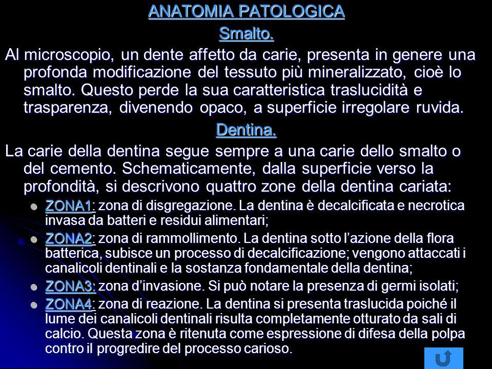 ANATOMIA PATOLOGICA Smalto.
