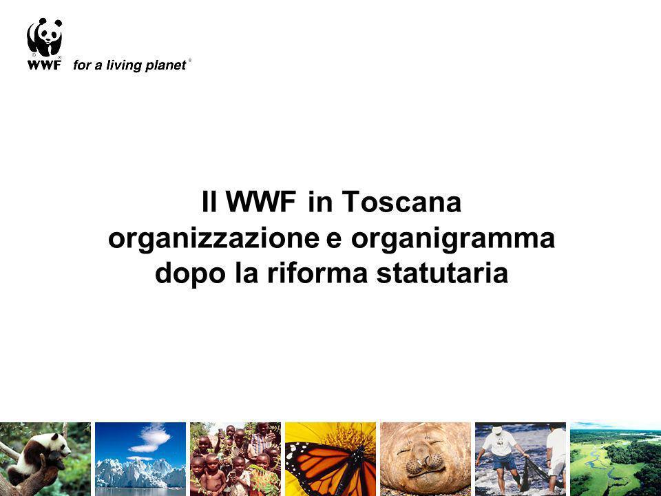 Il WWF in Toscana organizzazione e organigramma dopo la riforma statutaria