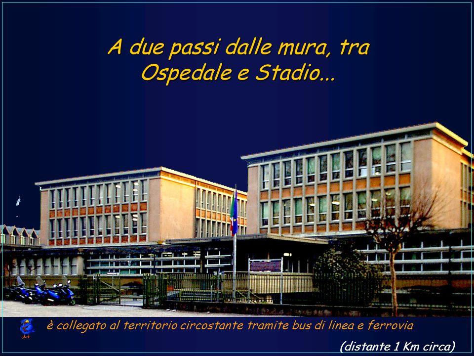 A due passi dalle mura, tra Ospedale e Stadio...