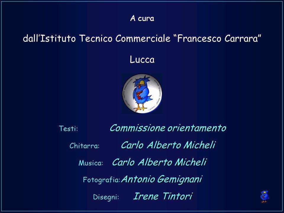 A cura dallIstituto Tecnico Commerciale Francesco Carrara Lucca Commissione orientamento Testi: Commissione orientamento Carlo Alberto Micheli Chitarr