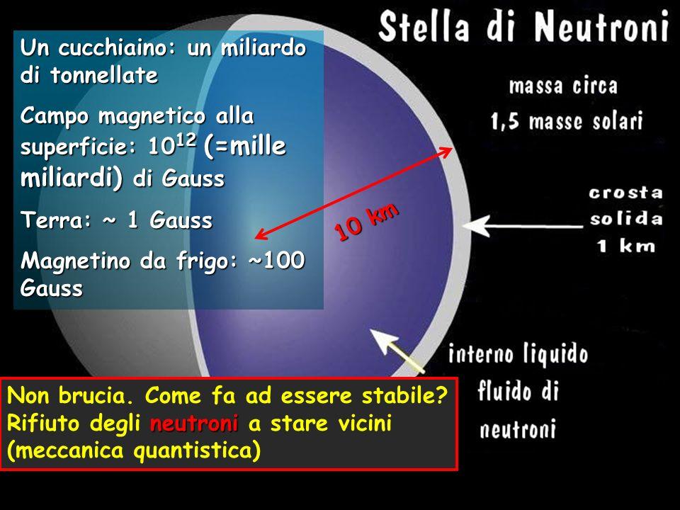 Un cucchiaino: un miliardo di tonnellate Campo magnetico alla superficie: 10 12 (=mille miliardi) di Gauss Terra: ~ 1 Gauss Magnetino da frigo: ~100 G