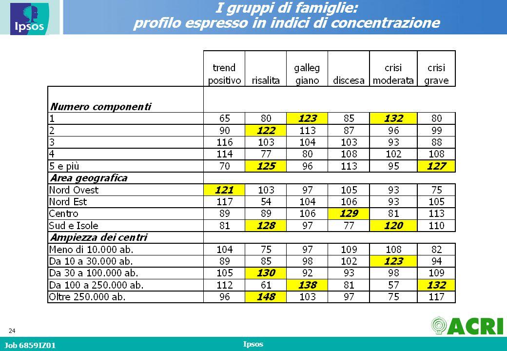 Job 6859IZ01 Ipsos 24 I gruppi di famiglie: profilo espresso in indici di concentrazione