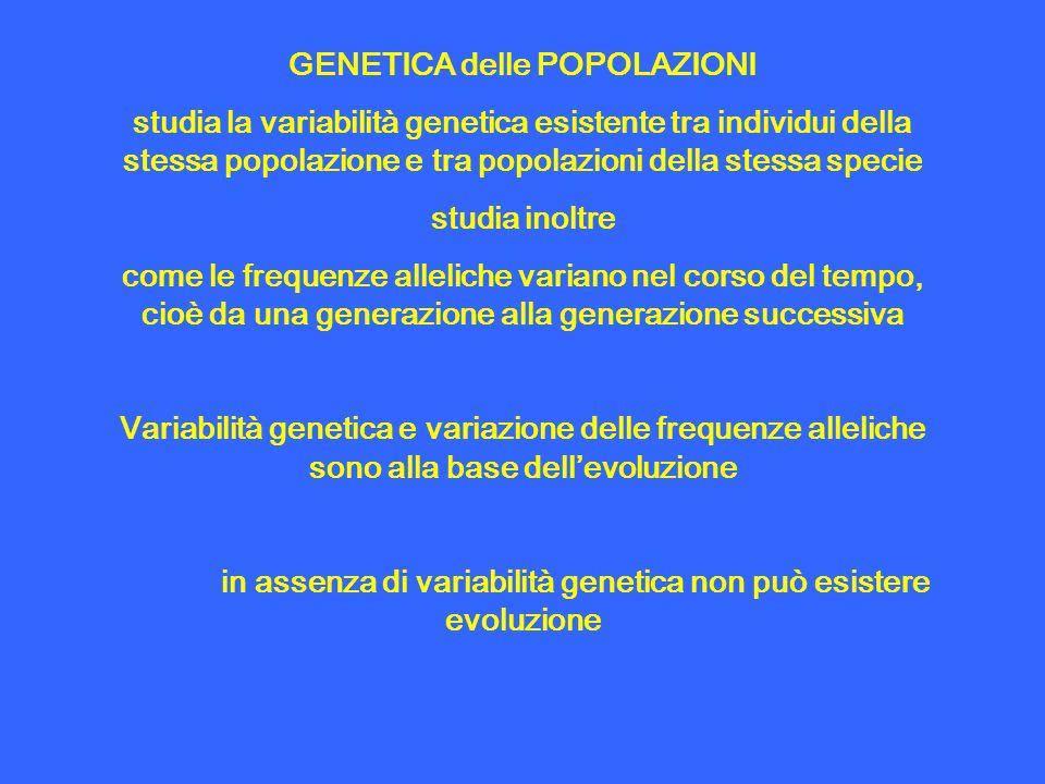 GENETICA delle POPOLAZIONI studia la variabilità genetica esistente tra individui della stessa popolazione e tra popolazioni della stessa specie studi