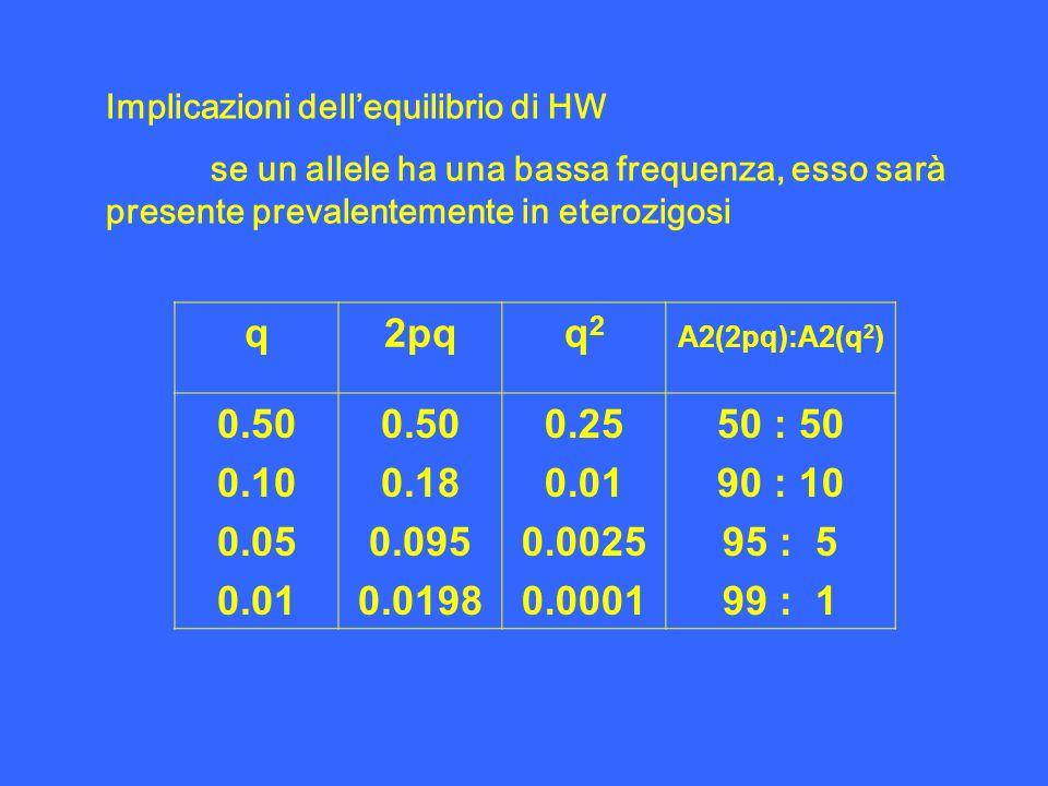Implicazioni dellequilibrio di HW se un allele ha una bassa frequenza, esso sarà presente prevalentemente in eterozigosi q2pqq2q2 A2(2pq):A2(q 2 ) 0.5