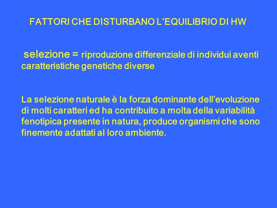 selezione = riproduzione differenziale di individui aventi caratteristiche genetiche diverse La selezione naturale è la forza dominante dellevoluzione