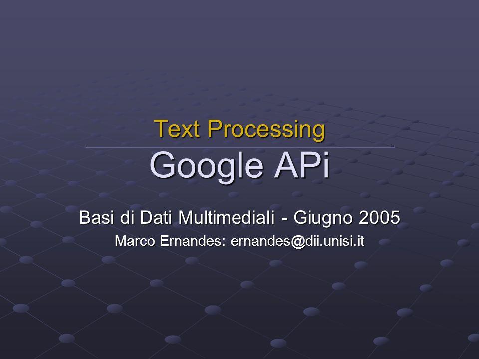 Introduzione Google Web APIs è una servizio software (beta) che permette a un qualsiasi programma di collegarsi direttamente al motore di ricerca Google.
