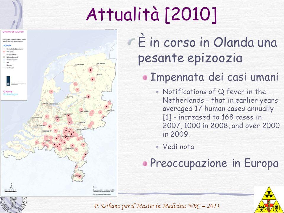 P. Urbano per il Master in Medicina NBC – 2011 Attualità [2010] È in corso in Olanda una pesante epizoozia Impennata dei casi umani Notifications of Q