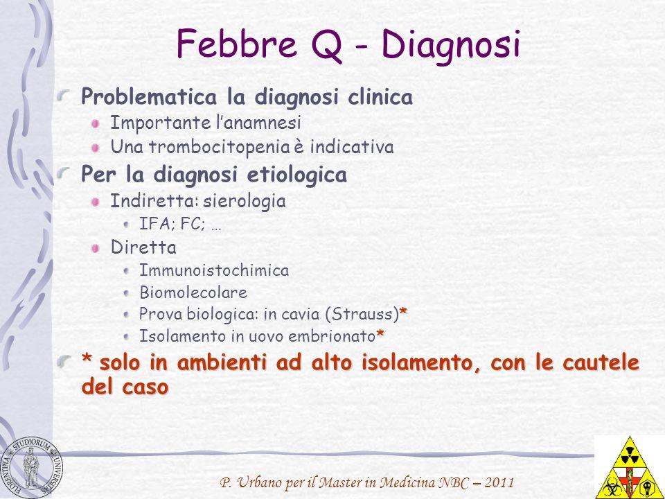 P. Urbano per il Master in Medicina NBC – 2011 Febbre Q - Diagnosi Problematica la diagnosi clinica Importante lanamnesi Una trombocitopenia è indicat