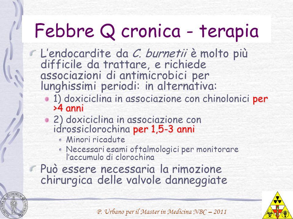 P. Urbano per il Master in Medicina NBC – 2011 Febbre Q cronica - terapia Lendocardite da C. burnetii è molto più difficile da trattare, e richiede as