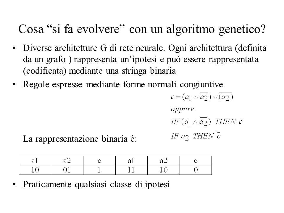Cosa si fa evolvere con un algoritmo genetico? Diverse architetture G di rete neurale. Ogni architettura (definita da un grafo ) rappresenta unipotesi