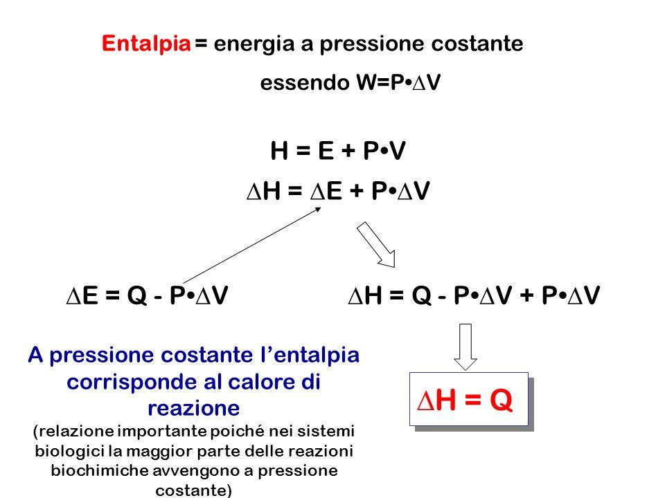 Entalpia = energia a pressione costante essendo W=P V H = E + PV E = Q - P V H = Q - P V + P V H = Q A pressione costante lentalpia corrisponde al calore di reazione (relazione importante poiché nei sistemi biologici la maggior parte delle reazioni biochimiche avvengono a pressione costante)