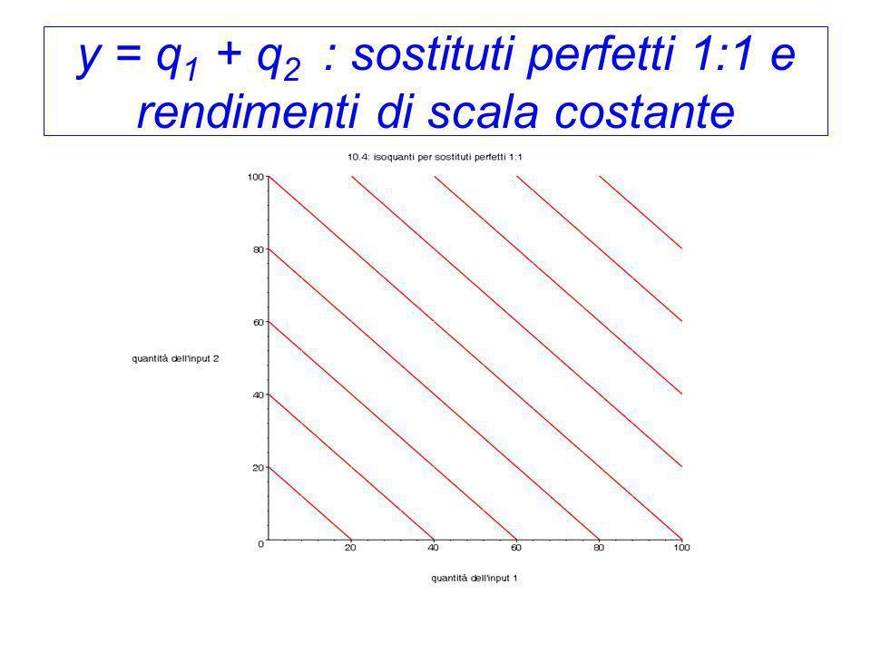 y = q 1 + q 2 : sostituti perfetti 1:1 e rendimenti di scala costante