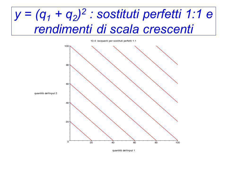 y = (q 1 + q 2 ) 2 : sostituti perfetti 1:1 e rendimenti di scala crescenti