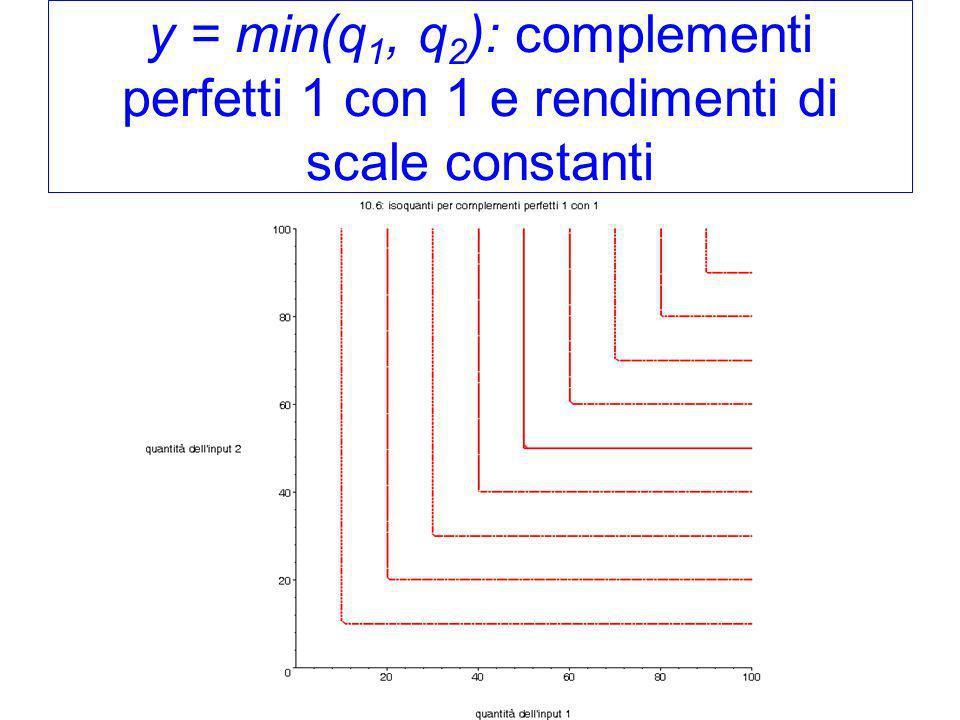 y = min(q 1, q 2 ): complementi perfetti 1 con 1 e rendimenti di scale constanti