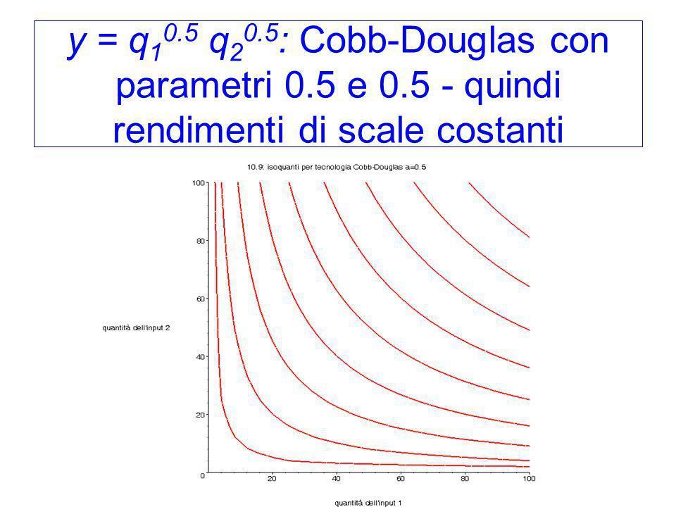 y = q 1 0.5 q 2 0.5 : Cobb-Douglas con parametri 0.5 e 0.5 - quindi rendimenti di scale costanti