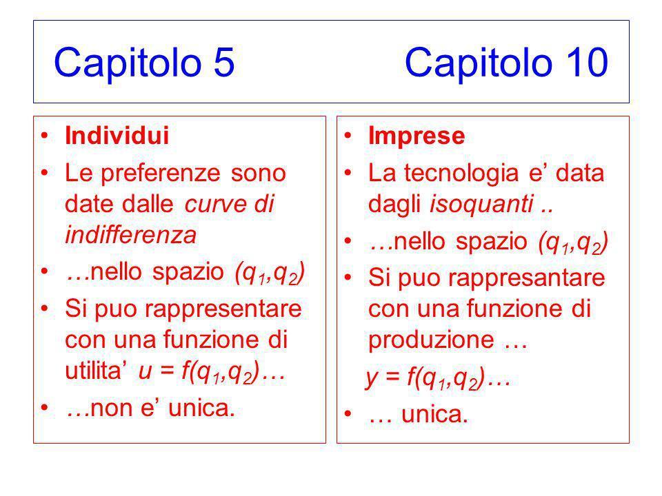 Capitolo 5 Capitolo 10 Individui Le preferenze sono date dalle curve di indifferenza …nello spazio (q 1,q 2 ) Si puo rappresentare con una funzione di