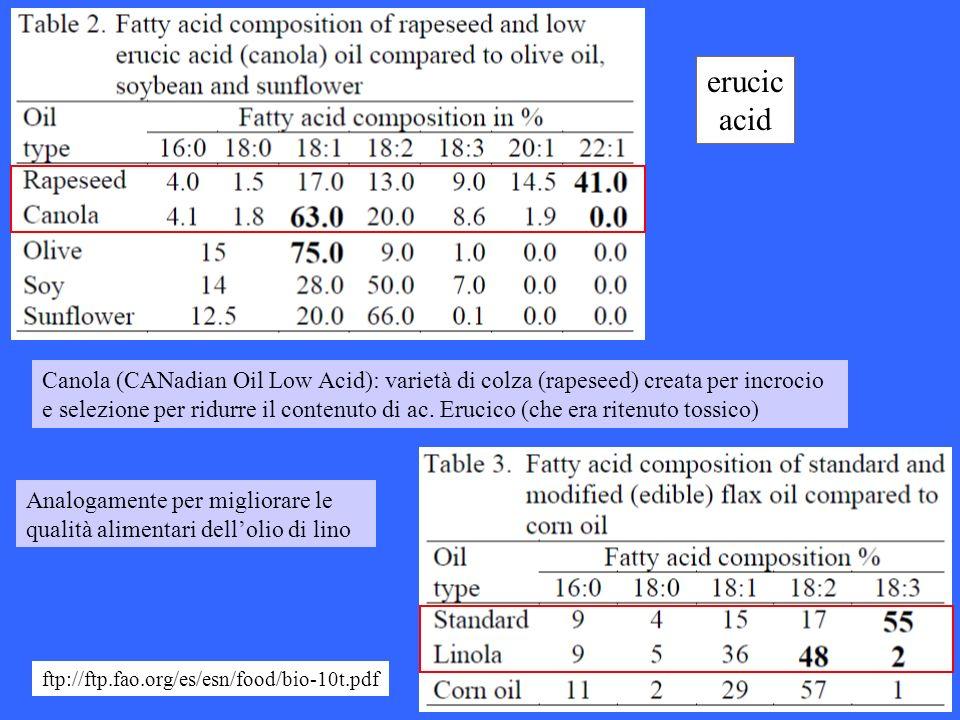erucic acid Canola (CANadian Oil Low Acid): varietà di colza (rapeseed) creata per incrocio e selezione per ridurre il contenuto di ac. Erucico (che e